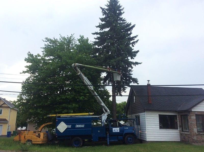 EMONDAGE GV | Professional Tree Services